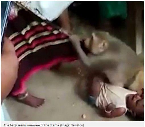 潑猴闖民宅擄嬰。(圖/翻攝Mirro)