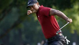 伍茲的「虎嘯」屢屢出在PGA錦標賽的球場上。(圖/美聯社/達志影像)