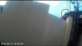 「我會怕啦!」酒駕通緝犯拒捕躲屋頂