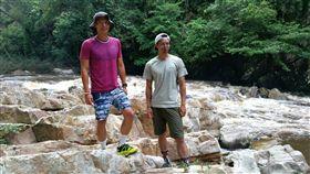 馬來西亞古老雨林
