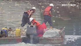 死魚衝祭典1200