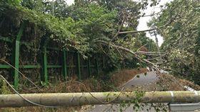 花蓮山區電桿斷擋道害停電 搶修後已恢復