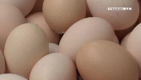 蛋價兩年高1800