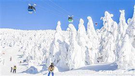 易遊網,滑雪。(圖/旅行社提供)