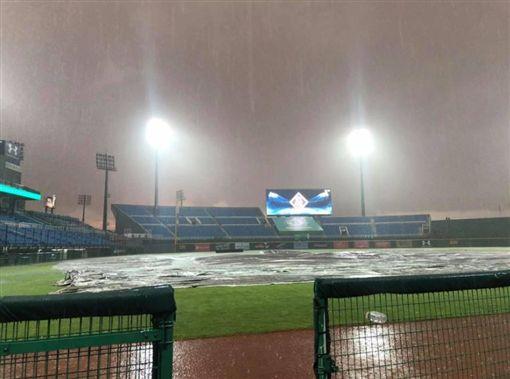 大雨讓桃園棒球場嚴重積水。(圖/攝自中華職棒聯盟臉書)