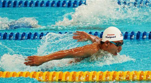 王冠閔200公尺蝶式晉決賽。(圖/中華奧會提供)