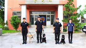台中花博11月登場 特種犬部隊全面備戰