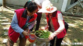 疾管署今(21)天公布台中市大里區1名60多歲女性及烏日區1名19歲女性,均染第一型登革熱。(圖/台中市衛生局提供)