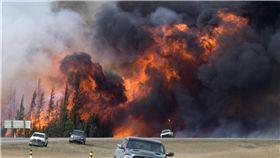加拿大森林野火