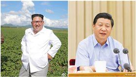 中國大陸,北韓,習近平,金正恩,拜訪(圖/翻攝自微博)