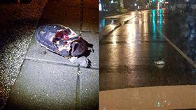 烏龜爆殼流血躺馬路上/臉書爆料公社