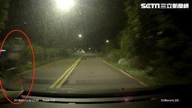 陽金公路,翹孤輪,危險駕駛,白影,危險駕駛,罰單