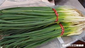 台北市衛生局今(2018)年7月生鮮蔬果(含茶葉)殘留農藥抽驗結果發現,台北市信義區天成飯店的南部蔥違規。(圖/台北市衛生局提供)