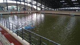 大學有游泳池…不對!竟是籃球場 網:養個海豚來表演 台南,真理大學,麻豆