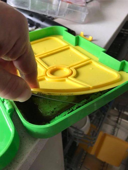 保鮮盒有黴菌/Grace Bollen臉書