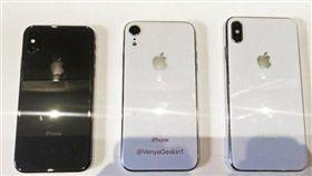 蘋果,新iPhone,愛瘋 圖/翻攝推特