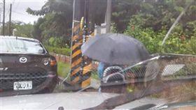 開學,學生,暑假,撐傘,背影(圖/翻攝自爆廢公社)