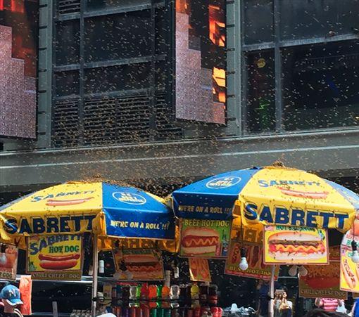 紐約客傻眼!2萬「蜜蜂」包圍熱狗攤紐約,時代廣場,熱狗,蜜蜂,NYPD翻攝自推特
