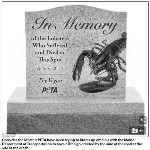 4500多隻龍蝦橫死公路,美國善待動物組織要求設墓碑。(圖/翻攝Daily Mail)