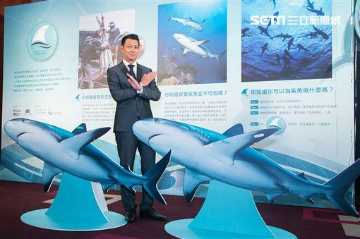 WildAid野生救援,世界無翅宣言,魚翅,鯊魚