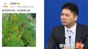 劉強東微博舊文:路邊的野花總是那麼美(圖/翻攝自微博)