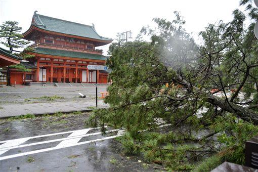 燕子颱風襲關西/達志影像/路透社