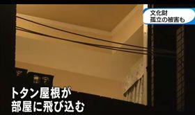 日本燕子颱風