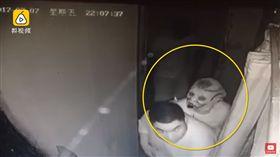 哥哥怕妹妹害怕,鬼屋全程牽著「她」,一回頭自己被嚇瘋。(圖/翻攝自梨視頻)