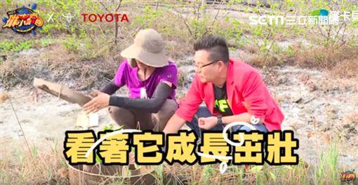 沈玉琳,怪事,七月半,飛機,種樹