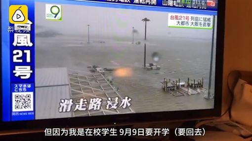 日本,關西機場,颱風,開學,機票(圖/翻攝自梨視頻)