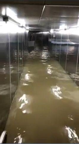 大雷雨釀災…東門捷運站一片汪洋 捷運正常行駛未受影響圖/翻攝畫面