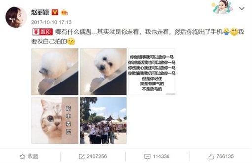 趙麗穎、馮紹峰/圖翻攝自微博