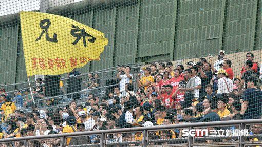 味全龍球迷在看台上歡迎張泰山進場。(圖/記者王怡翔攝)