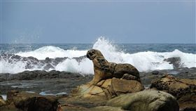 基隆八斗子海豹奇岩