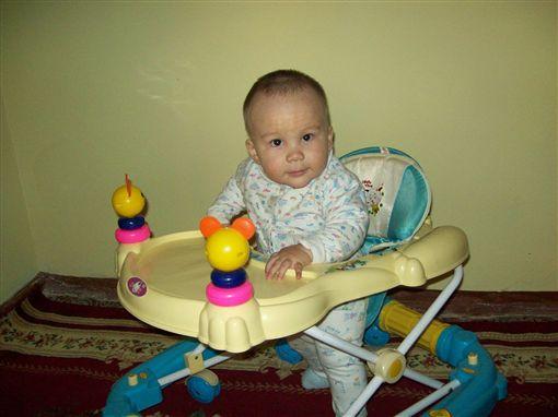 -螃蟹車-嬰兒學步車-學步車-(圖/作者Shuhrataxmedov,C.C. License)