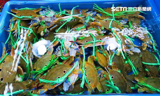 龜吼漁夫市集,萬里蟹,龜吼漁港,螃蟹