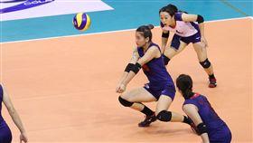 中華民國排球協會 CTVBA