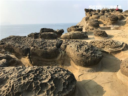 深澳漁港,象鼻岩,酋長岩,深澳,象鼻洞