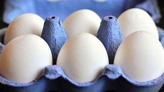 防沙門氏菌 專家教「蛋殼要洗乾淨」