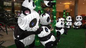 貓熊造型燈籠