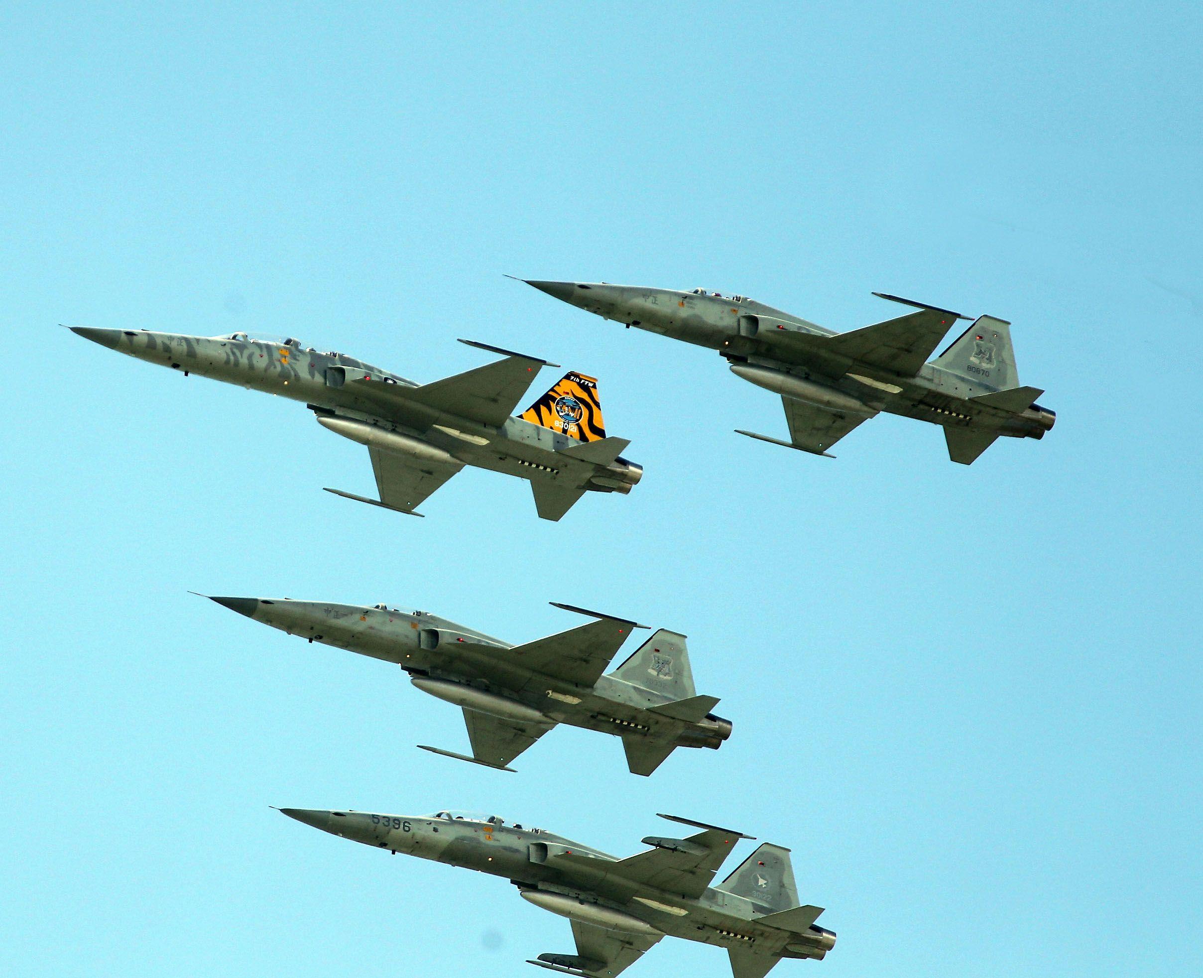 空軍F-5戰機以虎斑為主軸,機身與機翼漆上低視度白、灰相間虎斑,直尾翅為黃黑相間虎斑迷彩,象徵著基地所孕育出的小老虎堅守崗位、捍衛領空。(記者邱榮吉/攝影)