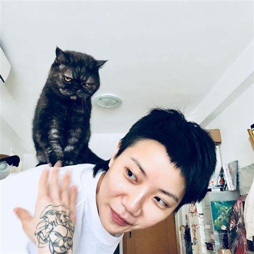 盧凱彤,自殺,貓咪,何韻詩/翻攝自盧凱彤IG