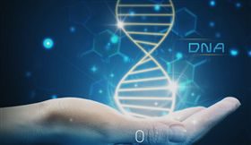 特管辦法9月上路 瑪旺纖維母細胞卡位細胞療法
