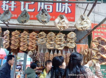 中國殘忍「臘乳狗」!連頭帶肉風乾吃 專挑3個月大小製作圖/翻攝自微博