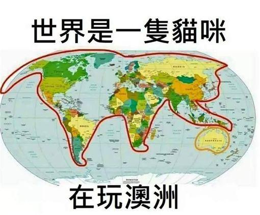 世界地圖,貓咪,哥倫布(圖/翻攝自爆廢公社)