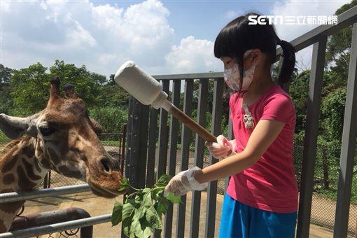 關西六福莊,親子,旅遊,長頸鹿,犀牛,保育員
