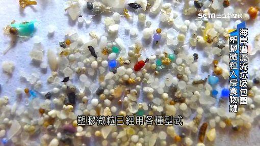 食鹽含「塑膠微粒」 易黏有害物質危害不明 ID-1568780