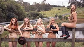 ▲雪梨大學獸醫系學生為助農民脫光拍攝日曆。(圖/翻攝自日曆官網) https://nudecalendar.wixsite.com/website