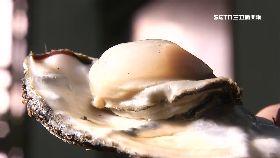 百牡蠣賺啥1800