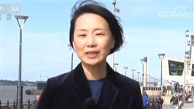 央視記者孔琳琳中國央視駐倫敦記者孔琳琳在英國保守黨年度座談會中打人後,她過去的言行陸續被「起底」。圖為孔琳琳日前報導英國脫歐議題時的新聞畫面。(取自中國央視新聞畫面)中央社 107年10月2日